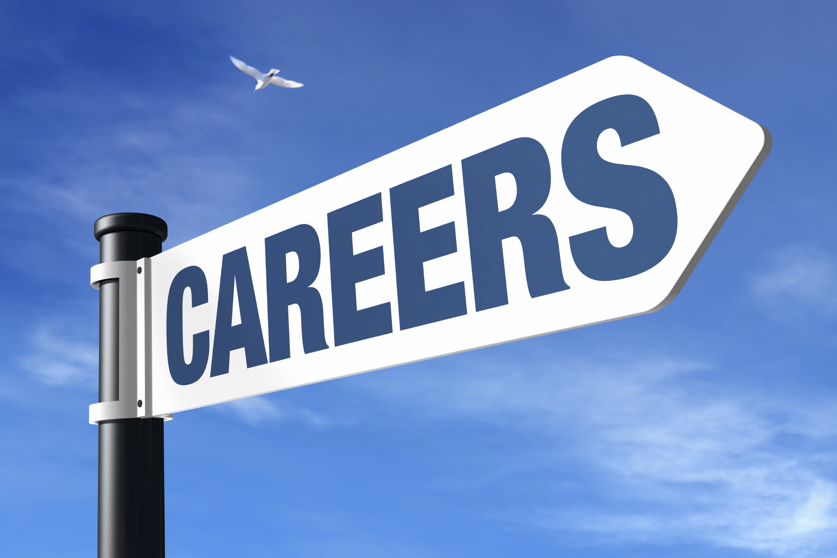 how to become a careers advisor