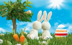 easter-bunny-orange-county[1]
