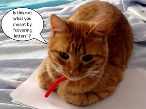covering-letters-cat